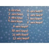 Чипборд НАБОР НАДПИСЕЙ 1-12 МЕСЯЦЕВ