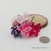 Цветы бумажные мальбери ЛИЛИИ РОЗОВЫЕ И ФИОЛЕТОВЫЕ МИКС 4см
