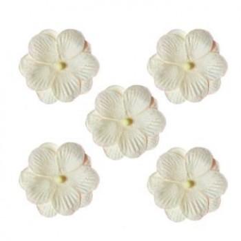 Бумажные цветы Scrapberry's АНЮТИНЫ ГЛАЗКИ БЕЛЫЕ