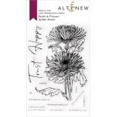 Набор штампов Altenew PAINT-A-FLOWER: SPIDER MUMS