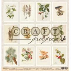Лист бумаги для скрапбукинга CraftPaper КАРТОЧКИ коллекция Ароматы леса 30х30см