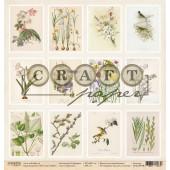 Лист бумаги для скрапбукинга CraftPaper КАРТОЧКИ коллекция Гербарий 30х30см