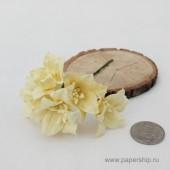 Цветы бумажные мальбери ЛИЛИИ КРЕМОВЫЕ 4см 5шт