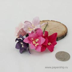 Цветы бумажные мальбери ЛИЛИИ РОЗОВЫЕ И ФИОЛЕТОВЫЕ МИКС 4см 5шт