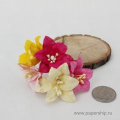 Цветы бумажные мальбери ЛИЛИИ РОЗОВЫЕ И ЖЕЛТЫЕ МИКС 4см 5шт