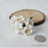 Цветы бумажные мальбери ЦВЕТЫ ВИШНИ БЕЛЫЕ 2,5см 5шт