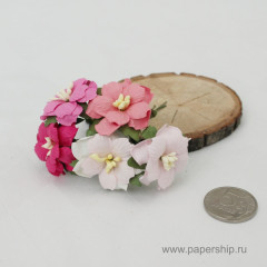 Цветы бумажные мальбери ДВУХСЛОЙНЫЕ ЦВЕТОЧКИ РОЗОВЫЕ МИКС 4см 5шт