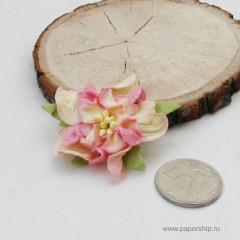 Цветы бумажные мальбери ГАРДЕНИИ КРЕМОВО-РОЗОВЫЕ 4см 1шт