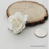 Цветы бумажные мальбери РОЗЫ SWEET MOON БЕЛЫЕ 5см 1шт