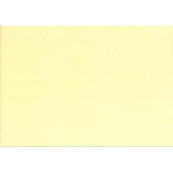 Ткань лоскутная Peppy QUILTER'S BASIC 30898-10 50х55см