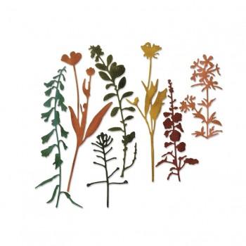 Набор ножей для вырубки Sizzix WILDFLOWERS #2 дикие цветы