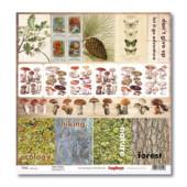 Лист бумаги для скрапбукинга Scrapberry's В ПОХОД ЗА ГРИБАМИ коллекция В лесу 30х30см